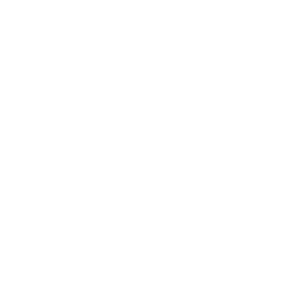 Established in 2004